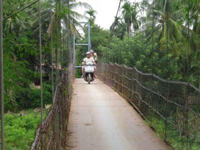 Battambang, chauves-souris et alentours