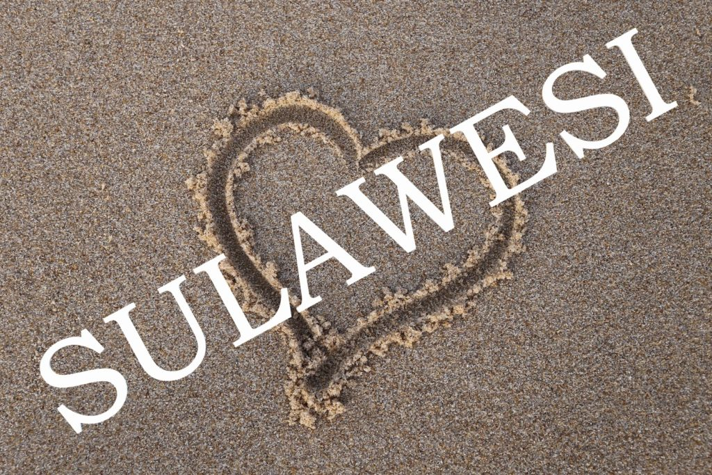 coups de coeur sulawesi