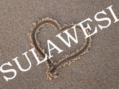 Nos coups de cœur à Sulawesi