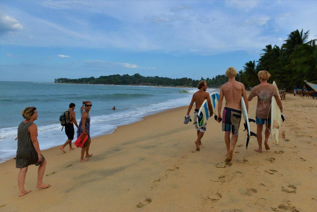 surfers et chatons entre beach hut ranga et le spot de surf