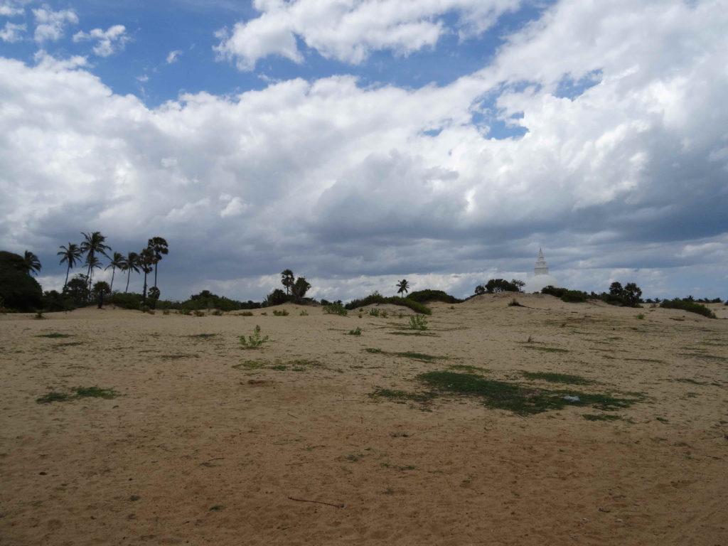 dunes de sable entre arugam bay et pottuvil