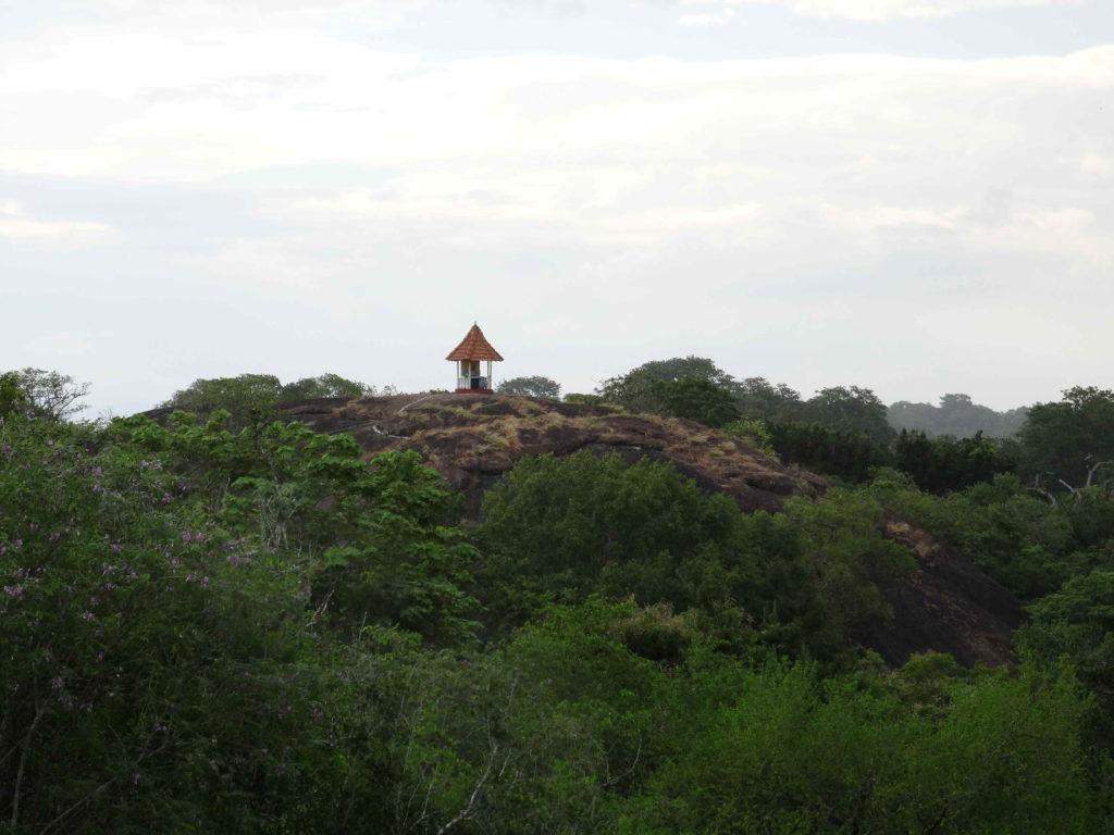 alentours d'elephant rock, vue depuis le sommet de rocher