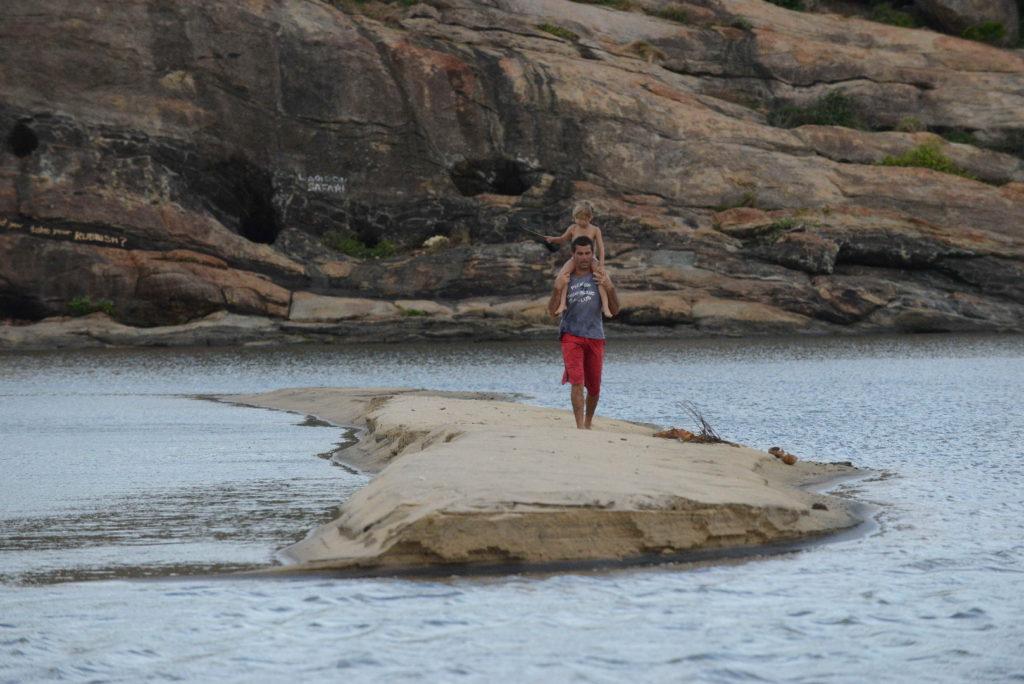 chaton et chatounette ont traversé la lagune d'elephant rock pour rejoindre les bancs de sable, près d'arugam bay