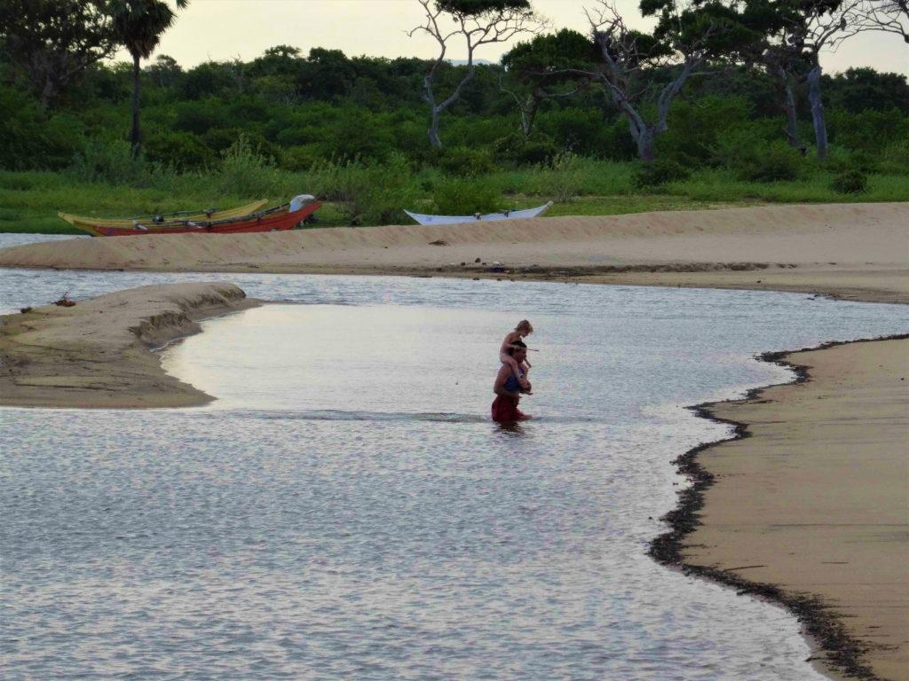 chaton et chatounette traversent la lagune d'elephant rock pour rejoindre les bancs de sable, près d'arugam bay