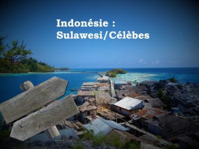 Itinéraires à Sulawesi