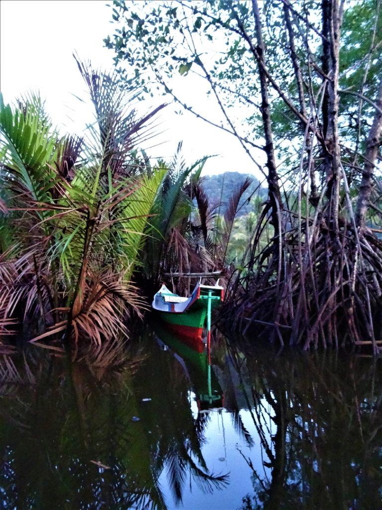 retour en bateau de ramang-ramang
