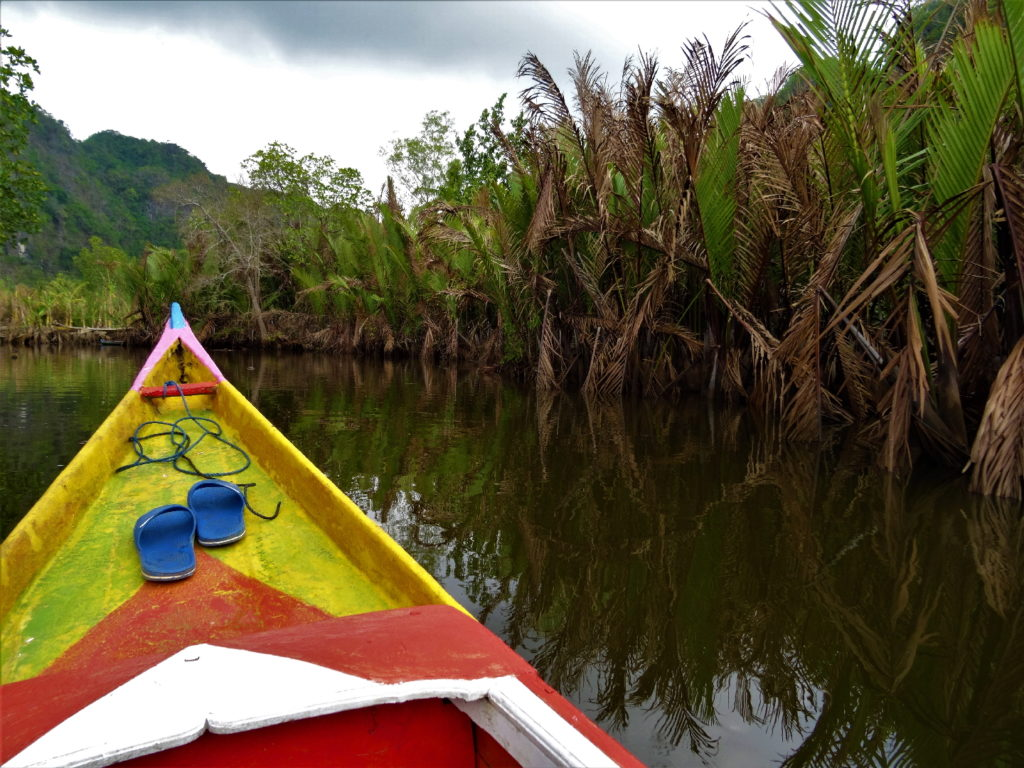 bateau au milieu de la mangrove de palmier pour rejoindre ramang-ramang