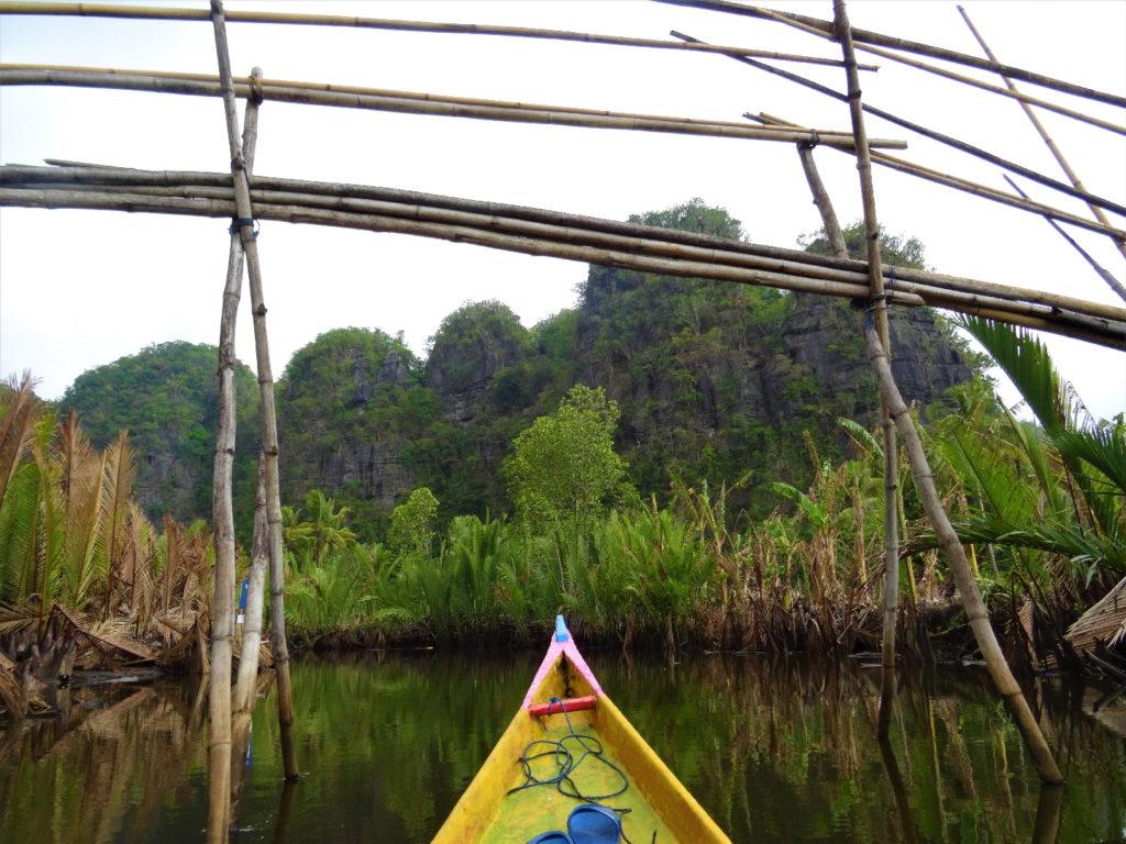 bateau au milieu de la mangrove de palmier pour rejoindre ramang-ramang sur fonds de parois karstiques