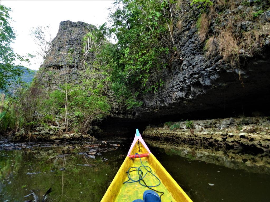 sur le bateau au milieu de la mangrove de palmier pour rejoindre ramang-ramang