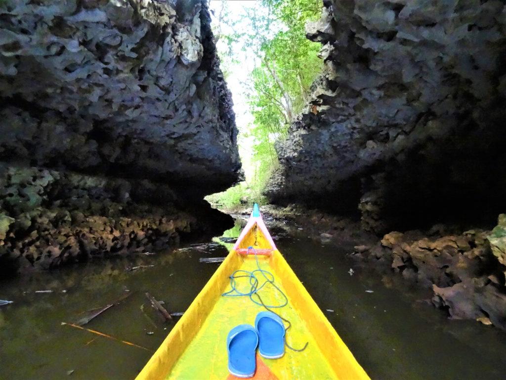 sur le bateau au milieu de la mangrove de palmier pour rejoindre ramang-ramang, passage étroit