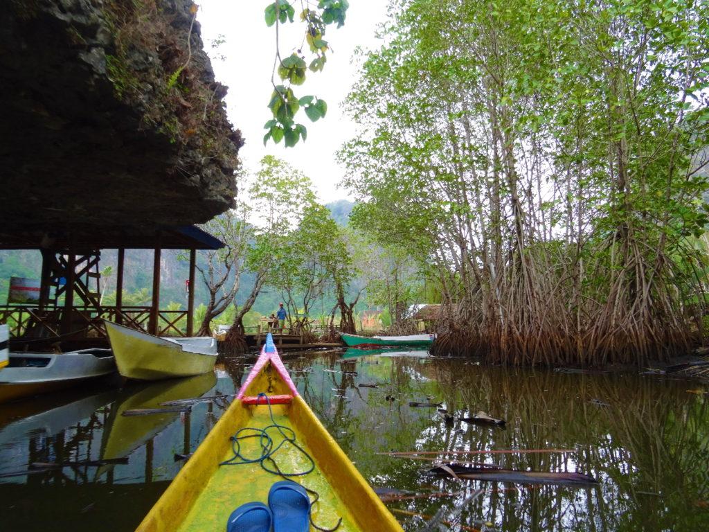 sur le bateau au milieu de la mangrove de palmier pour rejoindre ramang-ramang, arrivée
