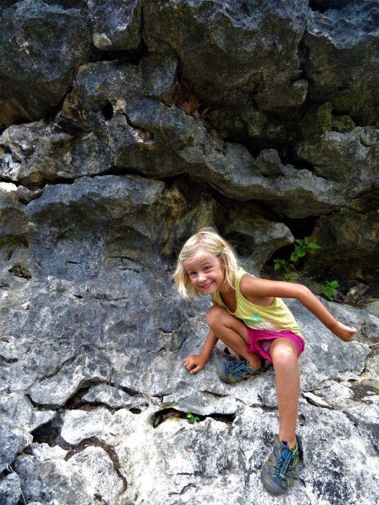 chatounette escalade dans des rochers du cirque de ramang-ramang