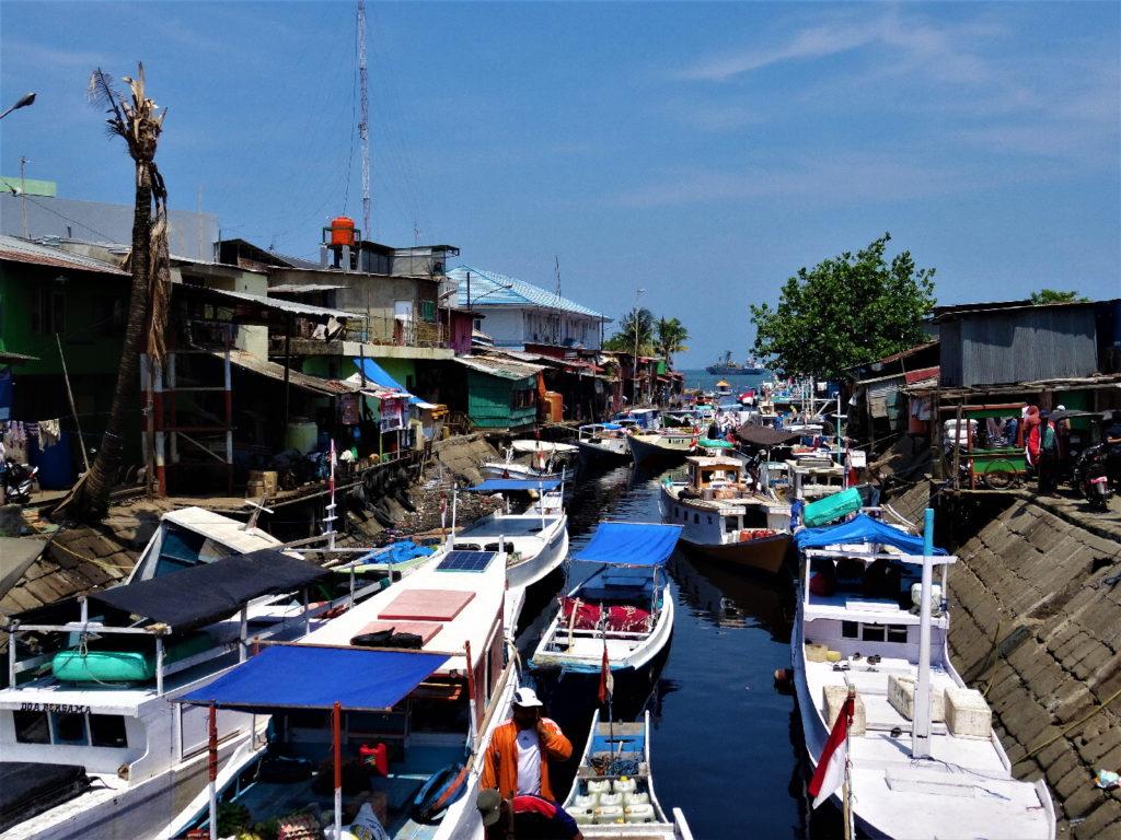 même le canal est embouteillé de bateaux