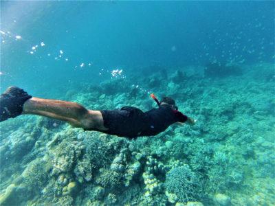 Snorkeling sur le reef n°5 depuis Malenge, îles Togian