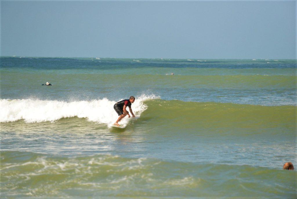 chaton surf à arugam bay
