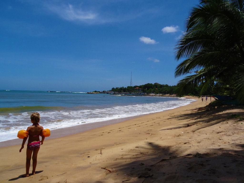 chatounette sur la plage de tangalle