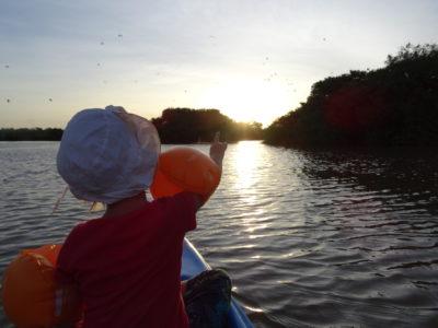 Tangalle : plage et mangrove en canoë