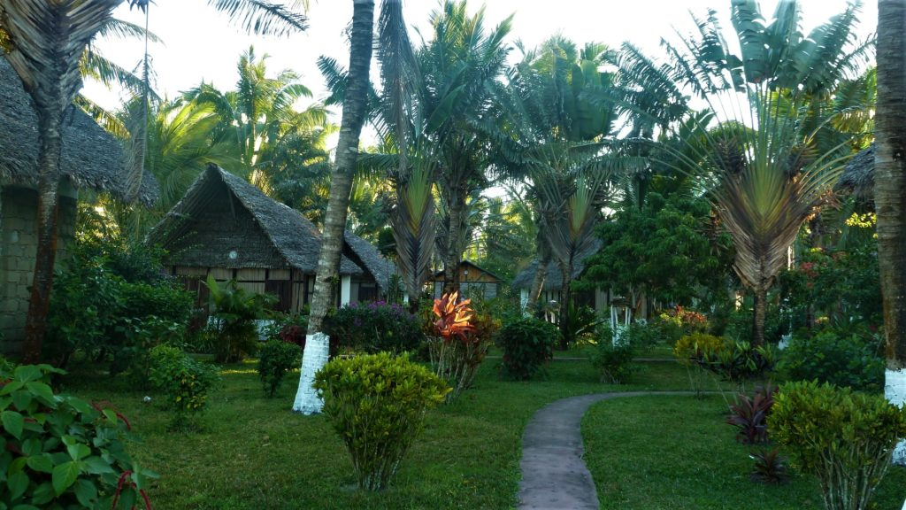 jardin de l'hôtel Hibiscus à Mahambo