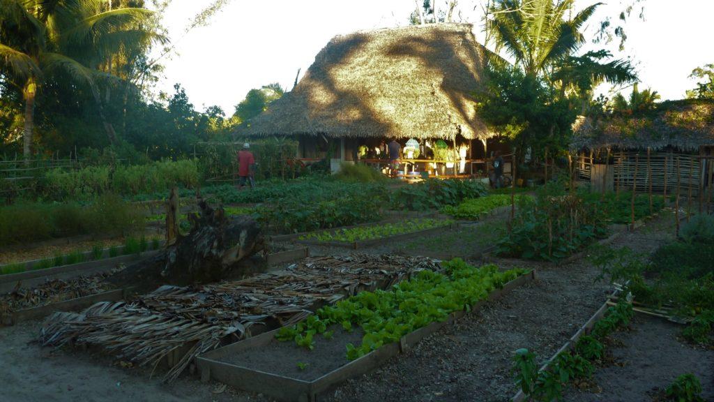 jardin à mahambo