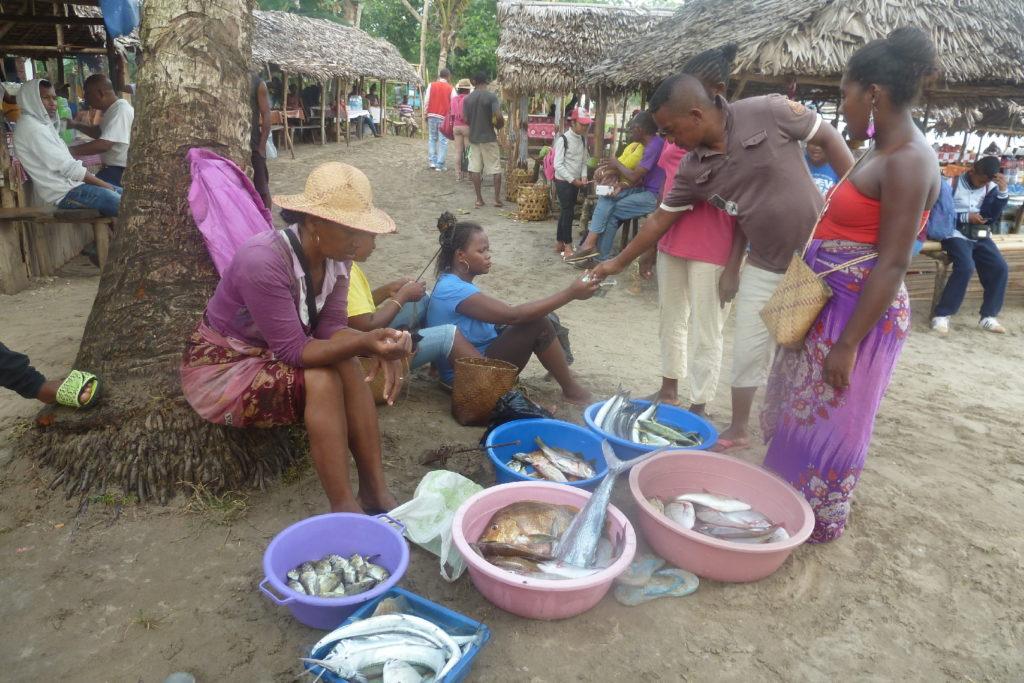 pêche du jour à mahambo