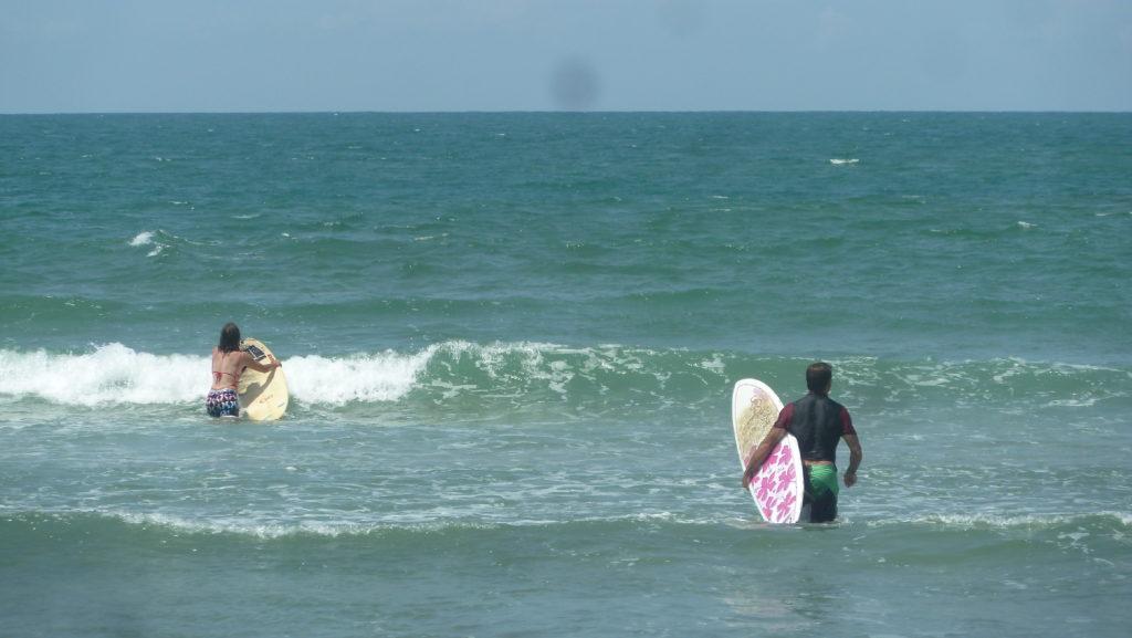 chaton et chatoune spot surf de mahambo avec leurs surfs : mini-malibu et fish
