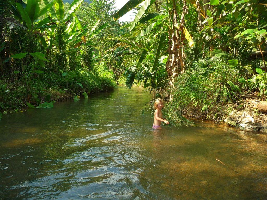 chatounette se baigne dans une rivière à chiang dao