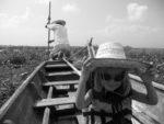 chatounette sur la barque pour un tour sur le lac de phayao
