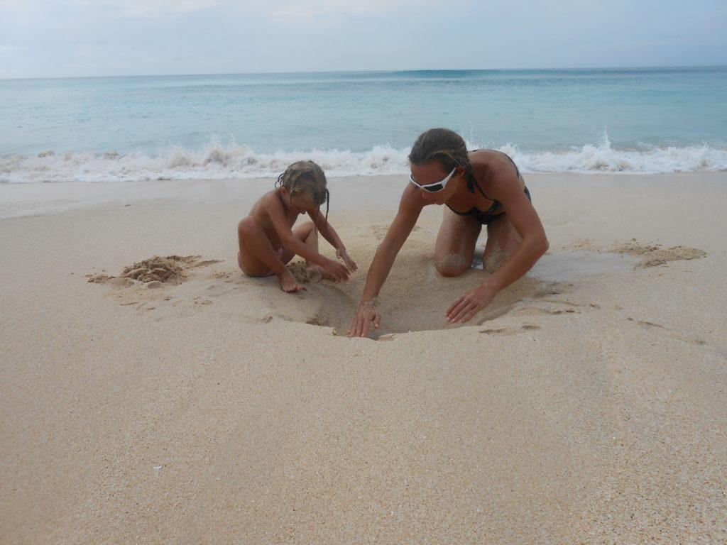 chatoune et chatounette creusant un trou dans le sable sur la plage de dreamland, spot de surf, près de Kuta Bali