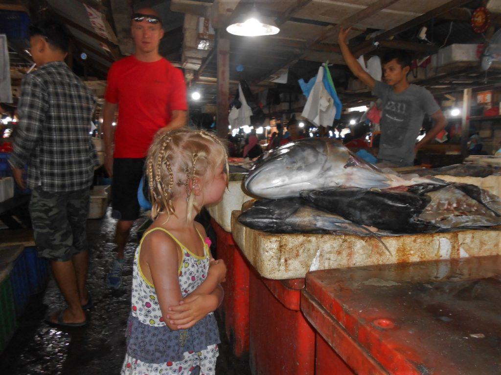 chatounette au fisk market (marché au poissons) de Kua Bali