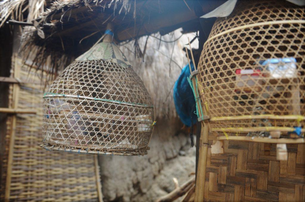 Sade, village sasak à Lombok, cages