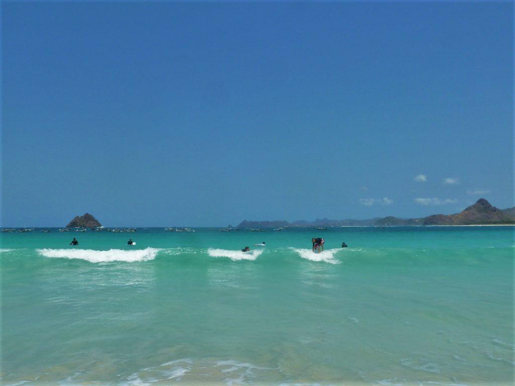 plage de Selong Belanka Beach, l'équipe des surfeurs en action