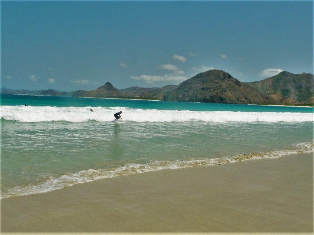 plage de Selong Belanka Beach, chaton en train de surfer