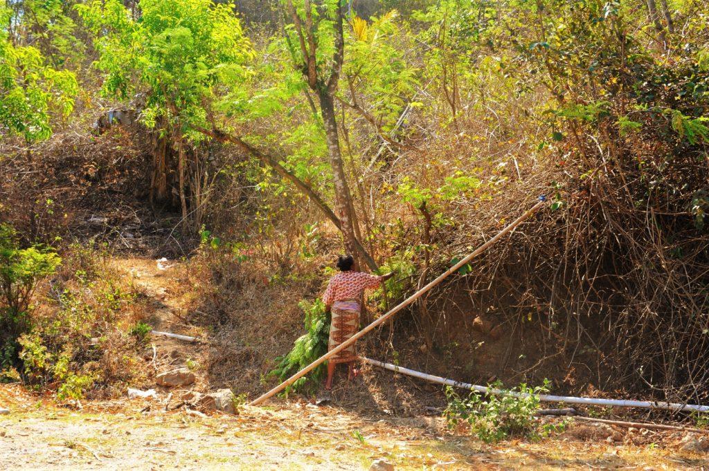 sur la route entre Kuta Lombok et Selong Belanak Beach, femme dans la végétation