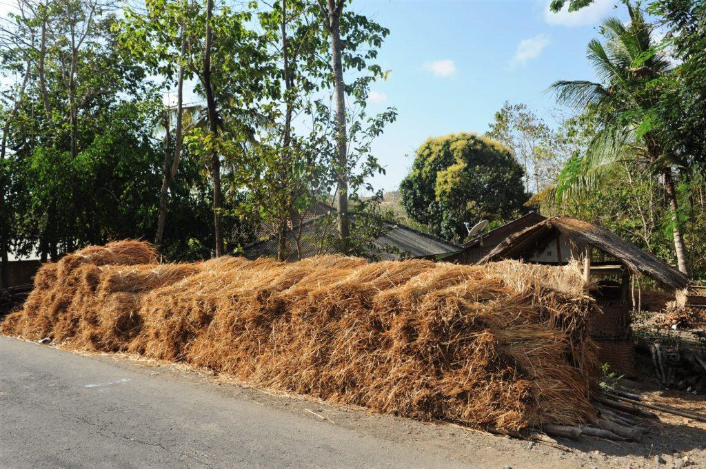 sur la route entre Kuta Lombok et Selong Belanak Beach, stockage de la paille