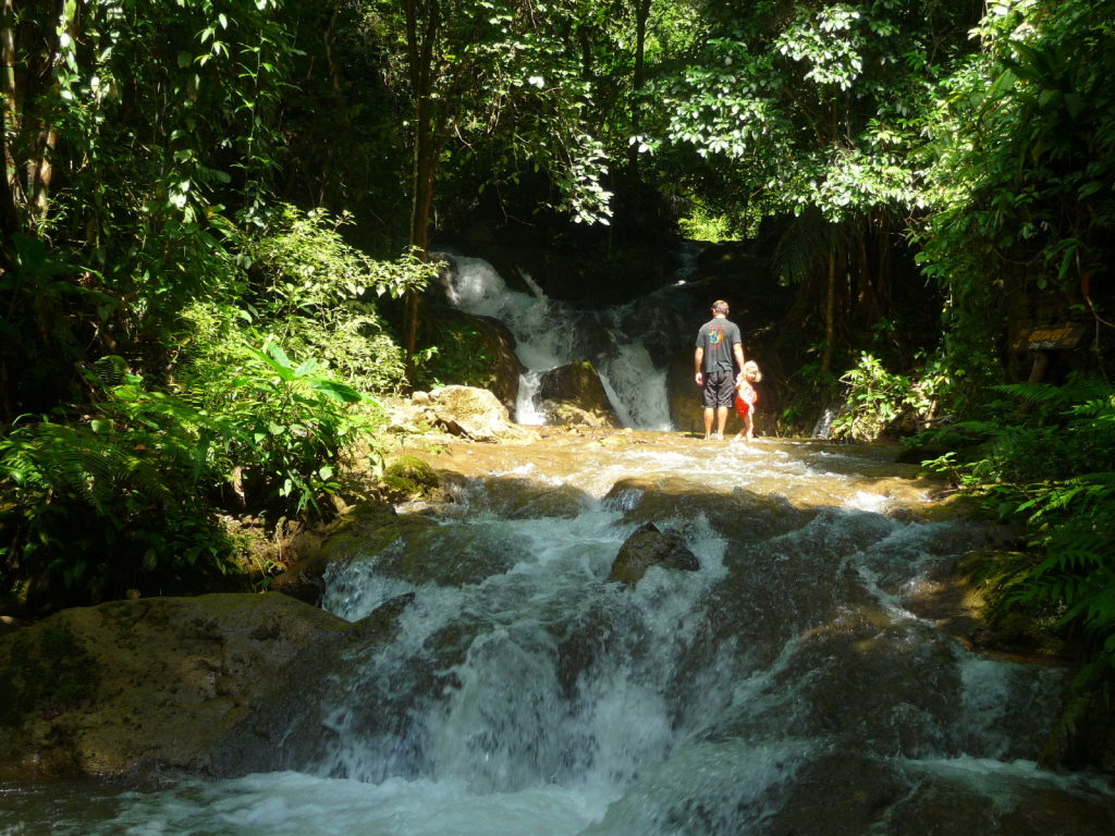 Chatounette et Chaton dans la jungle du Parc National de Khao Laem