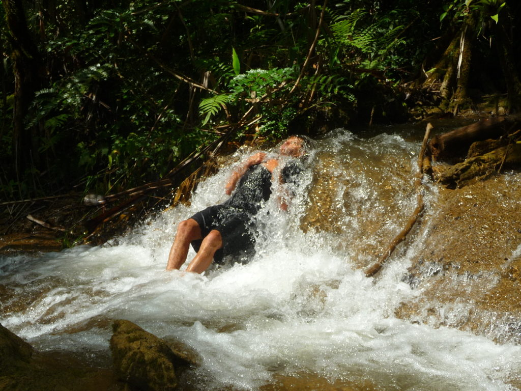 Chaton se baigne dans la rivière dans la jungle du Parc National de Khao Laem