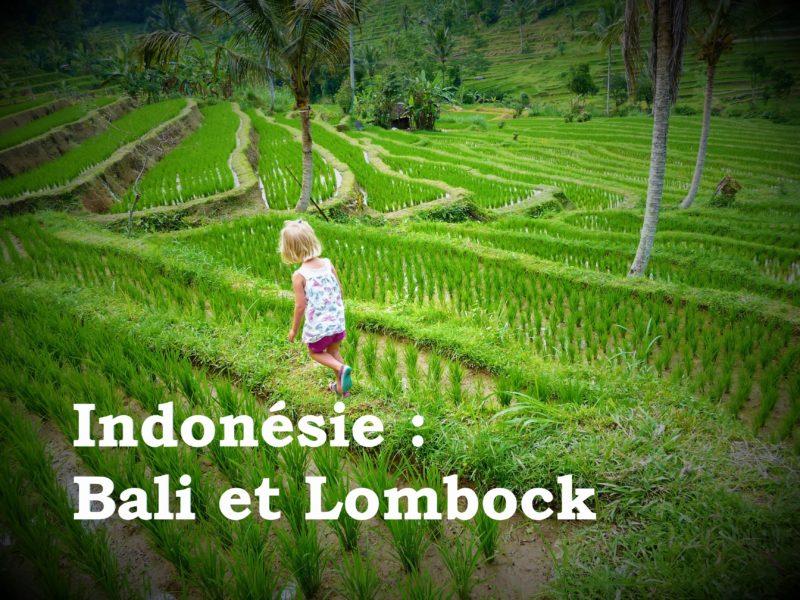 chatounette dans les rizières avec légende indonésie bali lombok