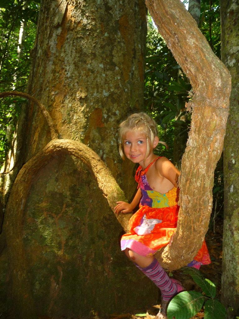 chatounette dans les lianes du parc national de khao yai