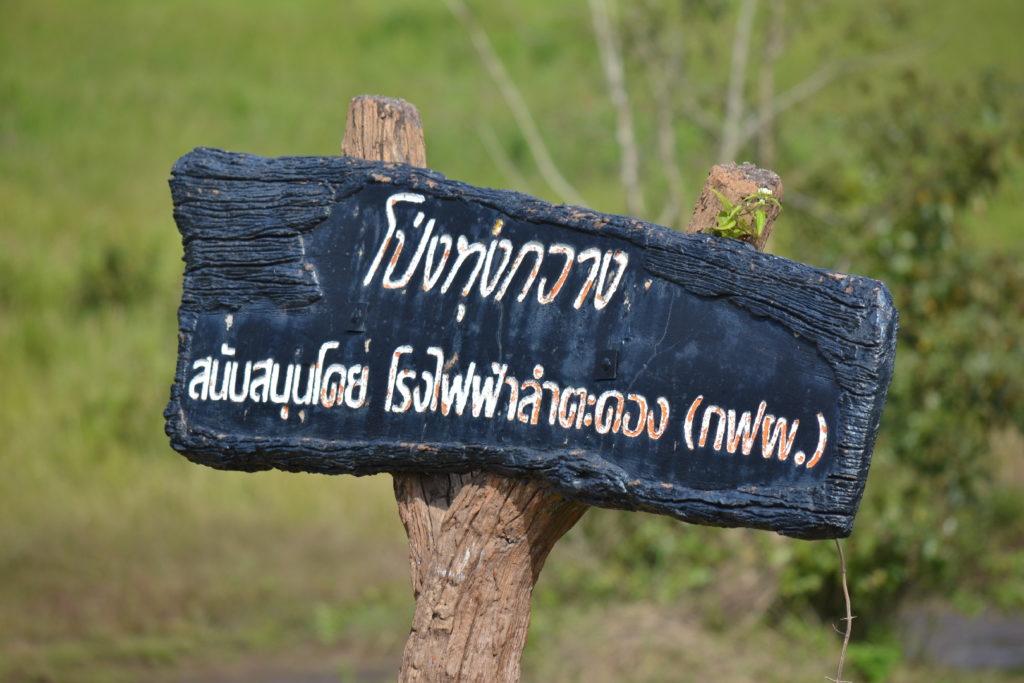 panneau à kha yai
