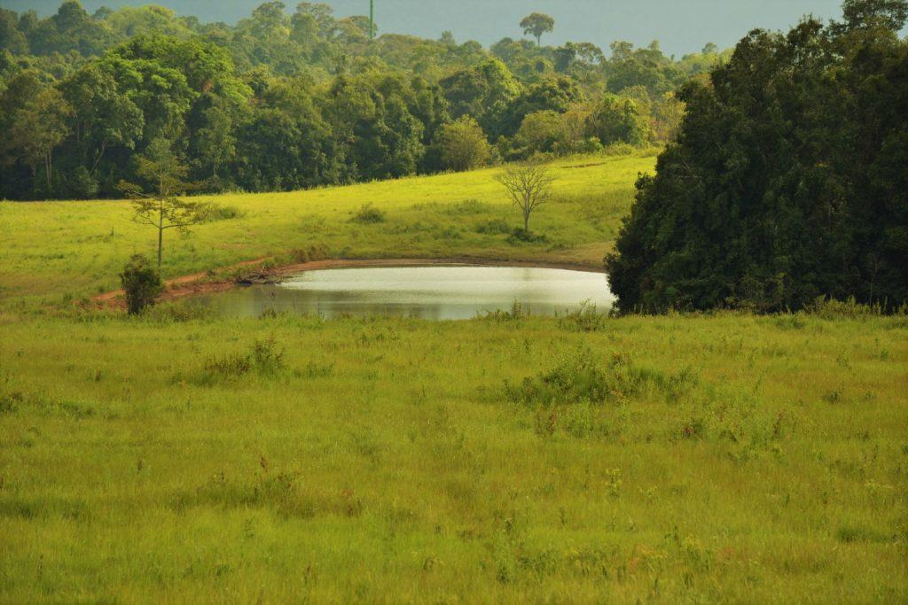 paysage à kha yai