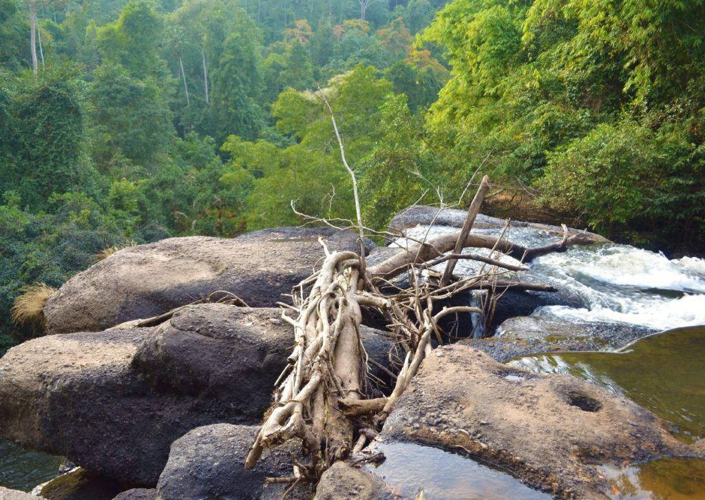 du haut de la cascade où léonardo di caprio a joué une scène dans le film la plage, parc national de khao yai