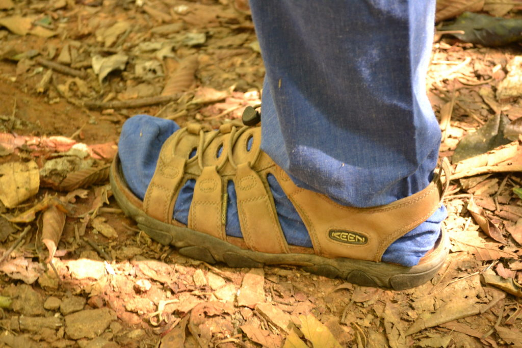 style claquette chaussette, guêtres bleues anti sangsues pour visiter le parc national de khao yai