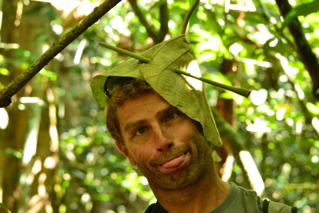 portrait de chaton avec un chapeau végétal sur la tête dans le parc national de khao yai