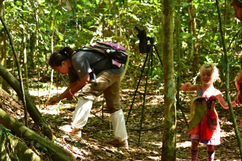 notre guide cherche à déloger des scorpions géants dans le parc national de kho yai