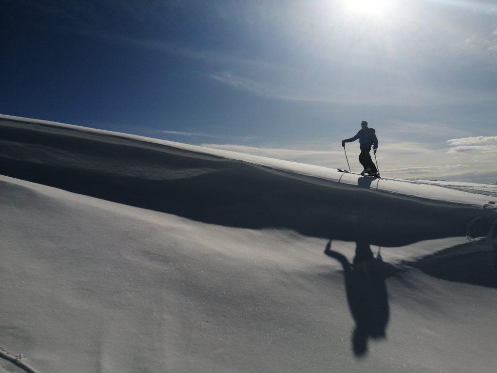 chaton en ski de rando aux arcs